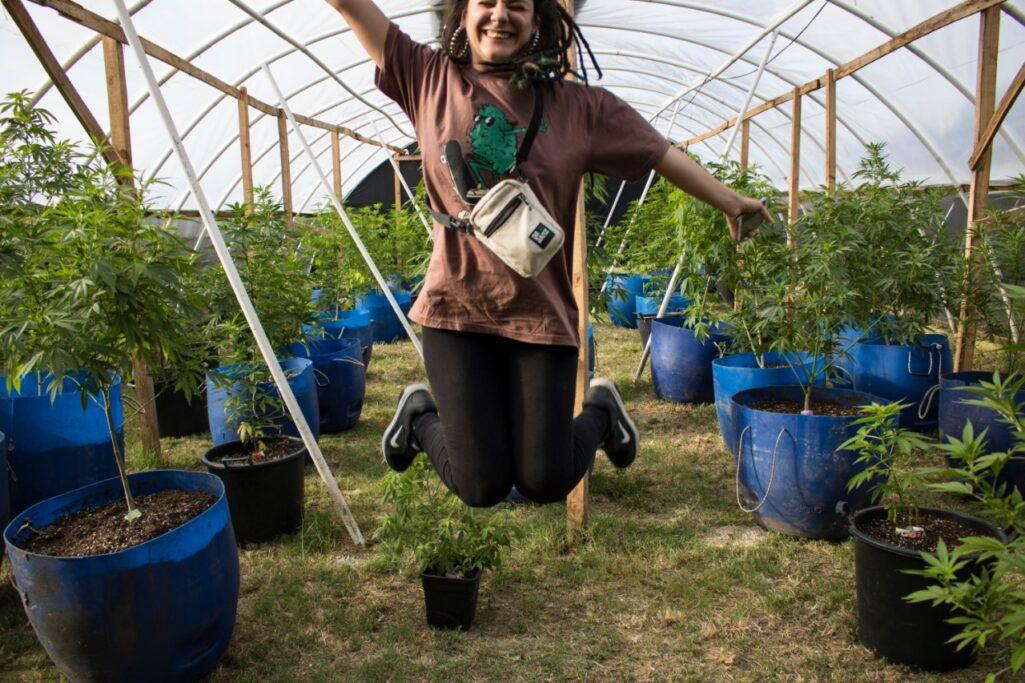 Nah Brisa visitou uma plantação de maconha legal!